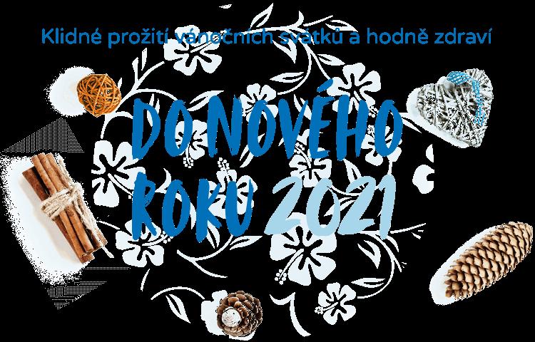 Informace k závěru roku 2020